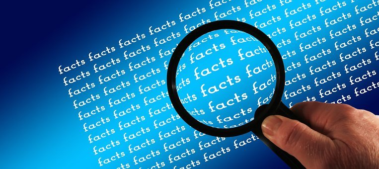 Magnifying Glass, Facts, Examine